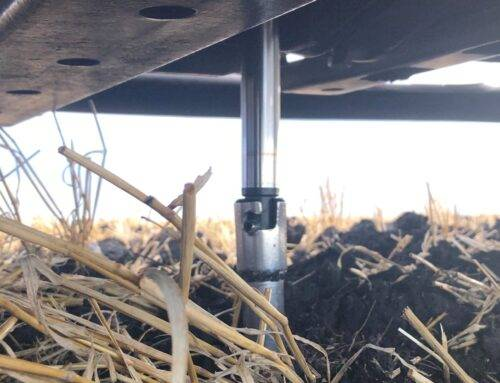 Soil Test P – Making a case for annual soil testing